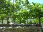 Giardino-di-boboli-Giardino-dellIris-035